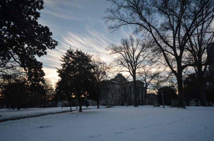 Snow (3 of 16)
